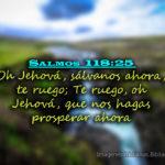 Salmos 118:25. Oh Jehová, sálvanos ahora, te ruego