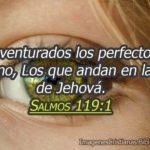 Salmos 119:1 Bienaventurados los perfectos de camino