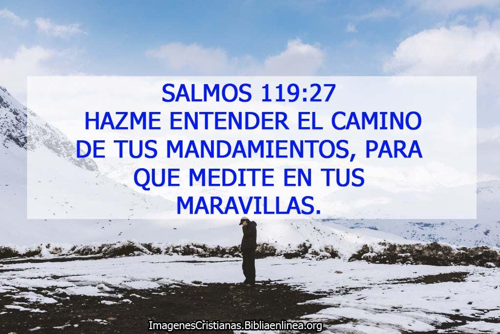 Imagenes de salmos hazme entender