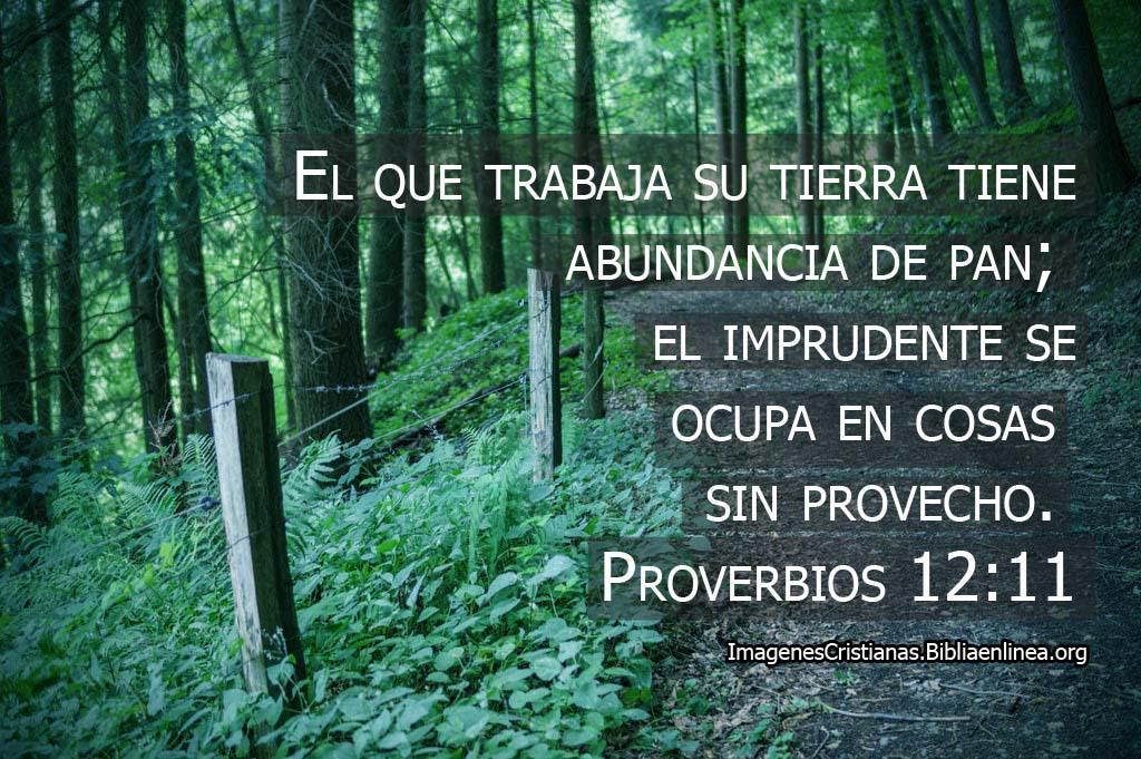 Imagenes de proverbios el que trabaja