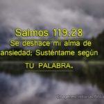 Imagenes con Salmos 119:28 Se deshace mi alma de ansiedad