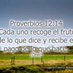 Proverbios 12:14 Cada uno recoge el fruto de lo que dice DHH
