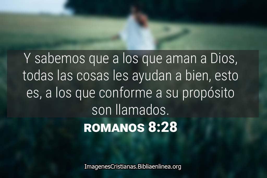 Y sabemos que a los que aman a dios, todas las cosas