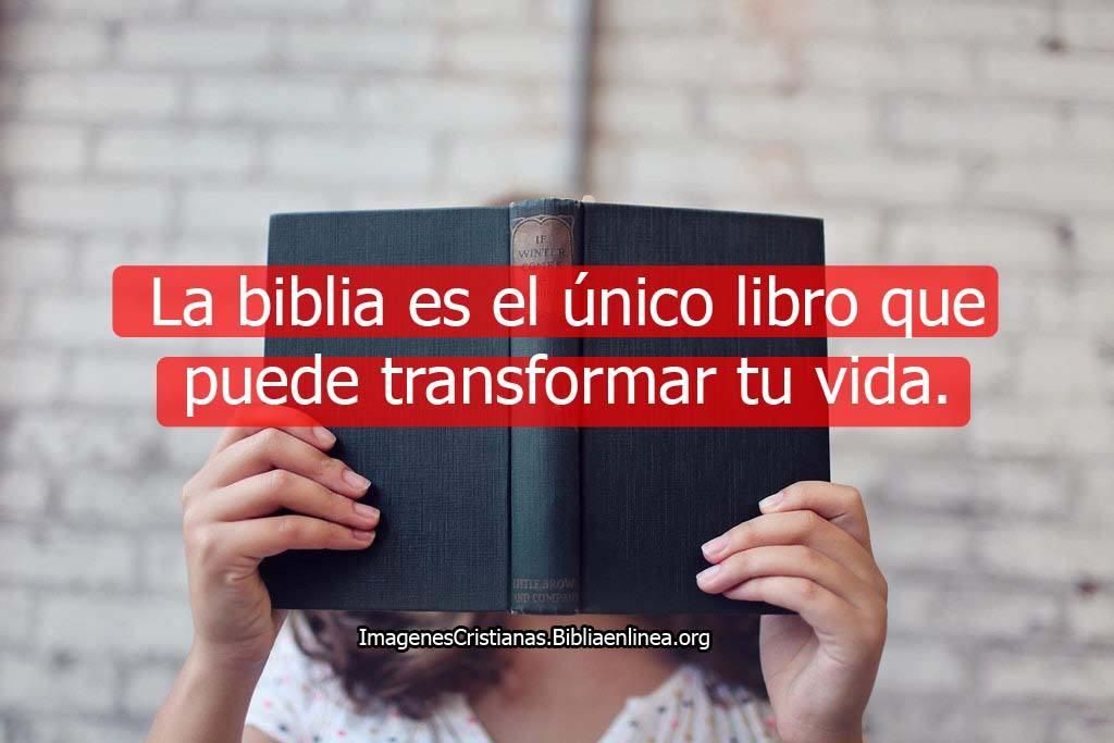 Imagenes de la biblia con frases