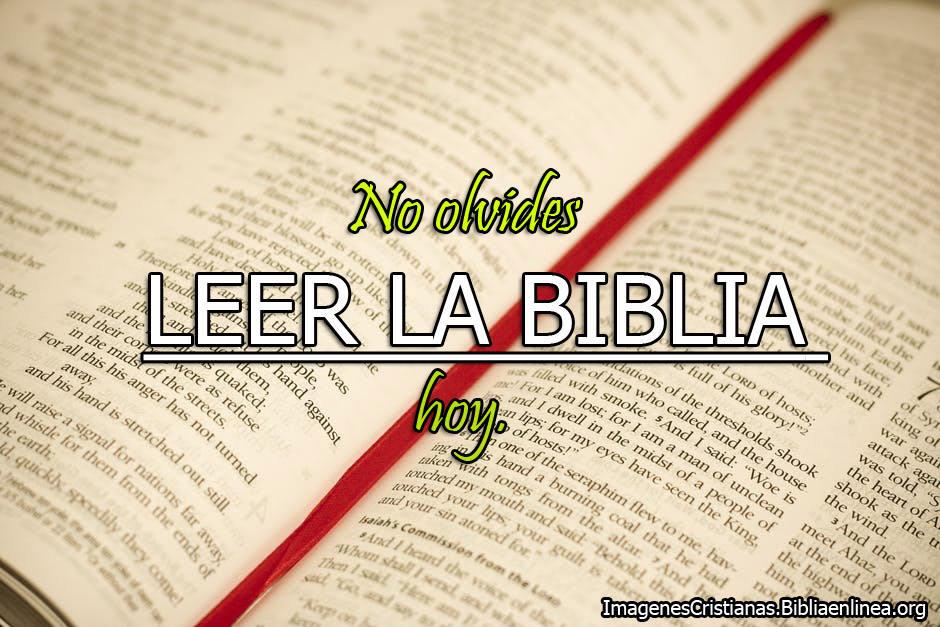 Consejo del dia leer la biblia