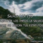 Salmos 119:155 Lejos está de los impíos la salvación, Porque no buscan