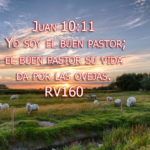 Imagenes del buen pastor
