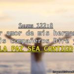 Salmos 122.8 […] La paz sea contigo