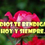 Imagenes Cristianas con Rosas