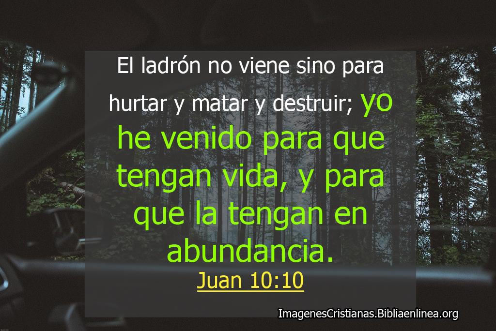 Pasaje biblico juan 10 10