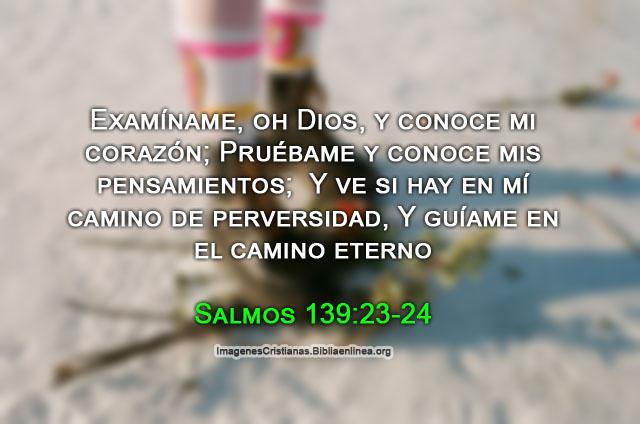 Bonitos salmos de la biblia en imagenes