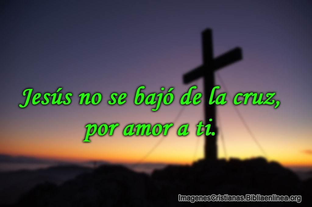 Jesus no se bajo de la cruz por amor a ti