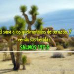 Salmos 147:3 El sana a los quebrantados de corazón