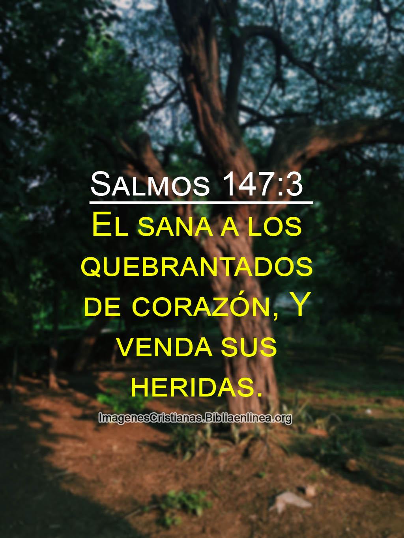 Salmos 147 3 el que sana a los quebrantados