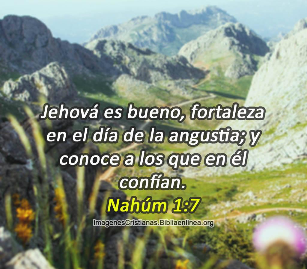 Jehová es bueno fortaleza en el día de la angustianahúm 1 7