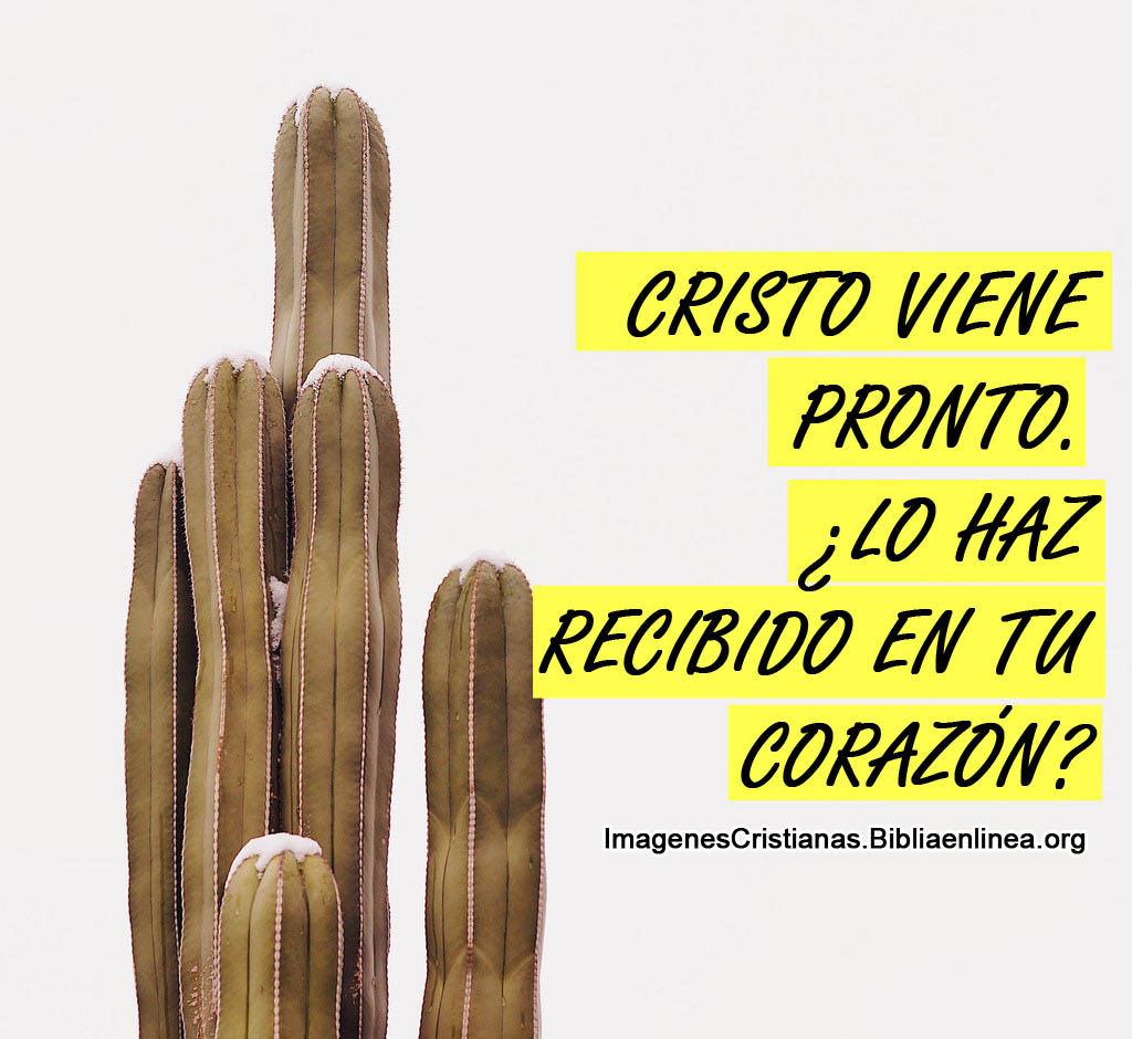 Imagenes cristianas anunciando la segunda venida de cristo