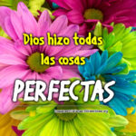 Imagenes Cristianas con Flores