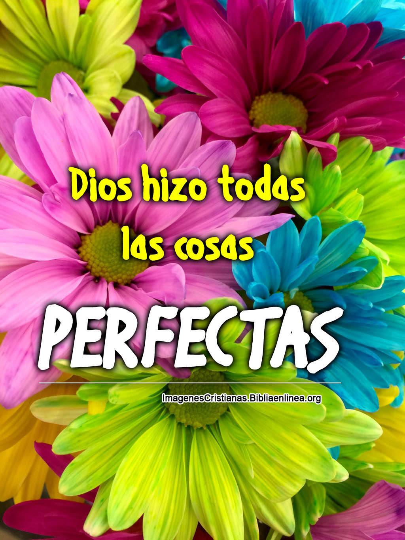 Imagenes alegres con flores y frases cristianas