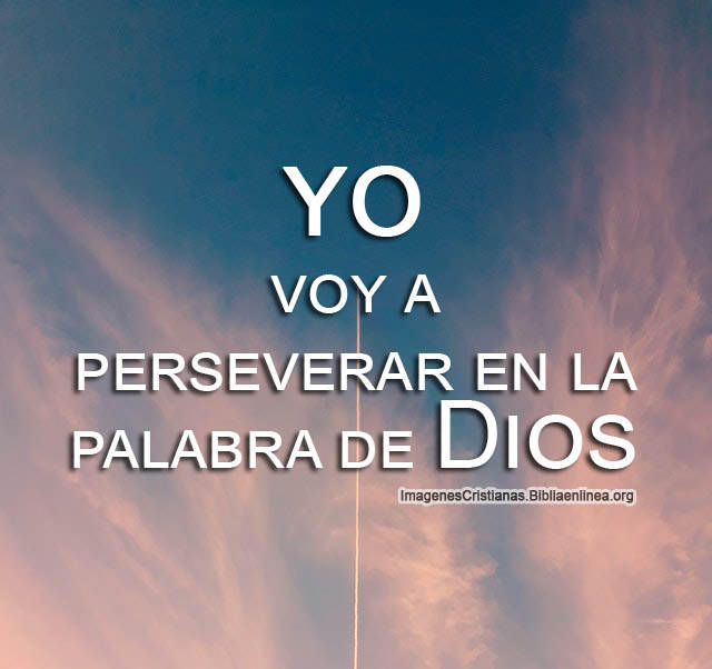 Seguir y perseverar en la palabra de dios