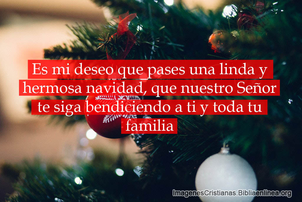 Frases Cristianas Para Navidad 2019 Mas Algunas Imagenes