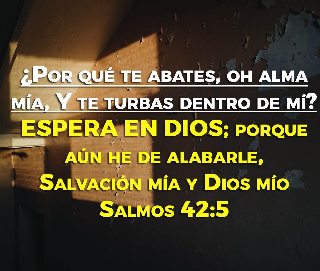 Salmos para personas desalentadas