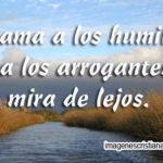 Dios ama a los humildes, mas a los arrogantes los mira de lejos.