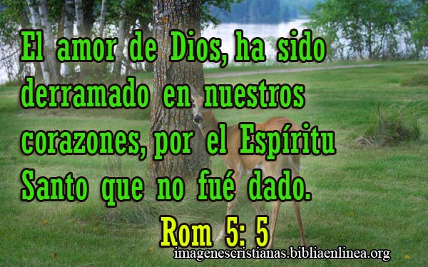 Imagen Cristiana Romanos 5-5