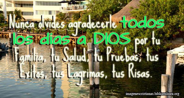 Imagen con Frase Cristiana para el muro