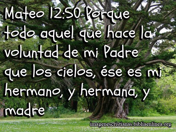 Mateo 12:50 Porque todo aquel que hace la voluntad de mi Padre que los cielos, ése es mi hermano, y hermana, y madre