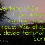 Proverbios 13:24 Sobre corregir a los hijos