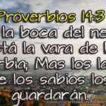Proverbios 14: 3