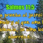 Imagen Cristiana con Salmos 11:5 Jehová prueba al justo