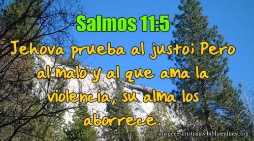 Salmos 11.5 Jehová prueba