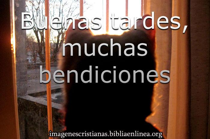 Imágenes Cristianas De Buenas Tardes Imagenes Cristianas
