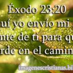 Imagen cristiana de promesa Éxodo 23:20