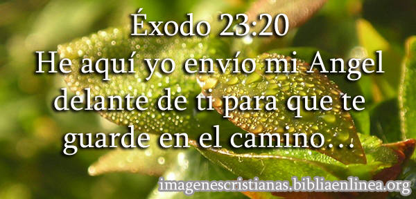 exodo-23-20