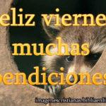Feliz viernes muchas bendiciones amigos
