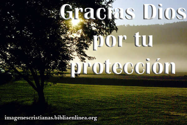 gracias Dios por tu proteccion