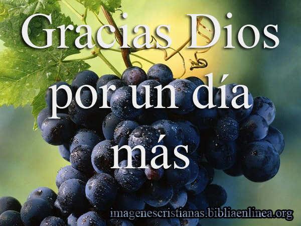 gracias Dios por un dia mas (2)