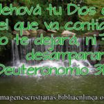 Imagen Cristiana Jehová tu Dios es el que va contigo (Deu 31:6)