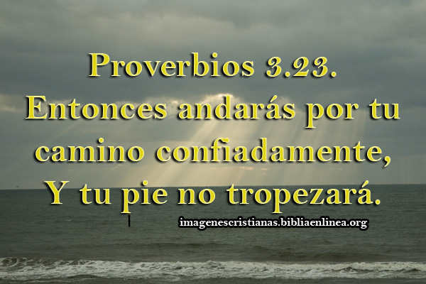 imagen cristiana con proverbios 3