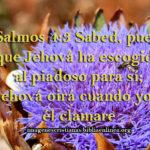 Imagen cristiana con Salmos 4:3