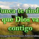 Nunca te rindas que Dios va contigo