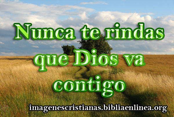 imagen cristiana nunca te rindas