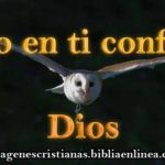 imagen de confianza cristiana