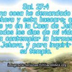 Imagen cristiana con Salmos 27:4