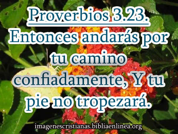 proverbios 3-23