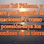 Salmos 2:8 Pídeme, y te daré ..