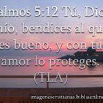 Imagen con Salmos 5:12 ..Dios bendice al que es bueno
