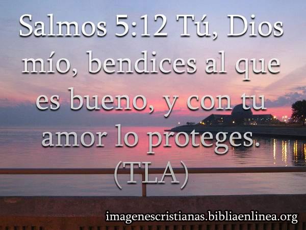 salmos 5-12